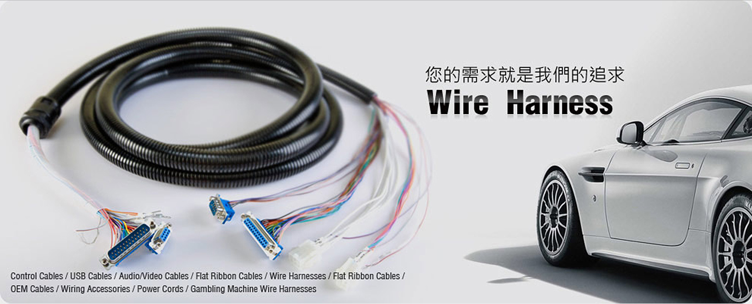 Fine Cable Assembly Wire Harness Supplier And Manufacturer Chan Ming Wiring Cloud Philuggs Outletorg